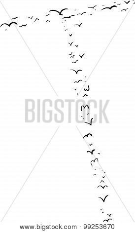 Bird Formation In T
