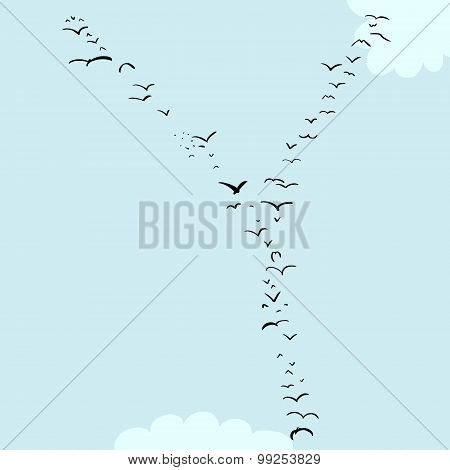 Bird Formation In Y