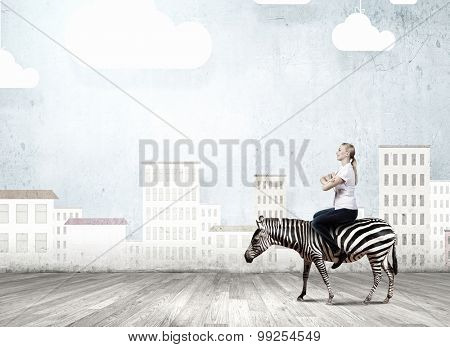 Young pretty fearless woman riding zebra animal