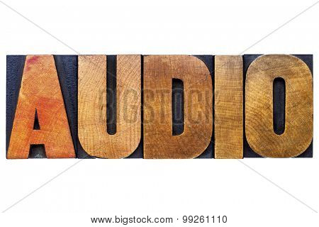 audio word  - isolated text in vintage letterpress wood type printing blocks
