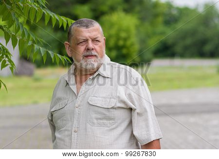 Outdoor portrait of a bearded senior man in light shirt looking into the distance with hope