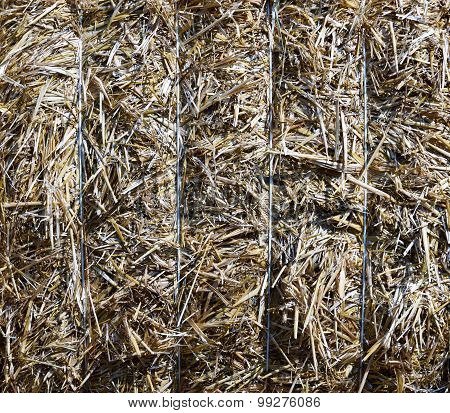 Bale Of Straw (background)
