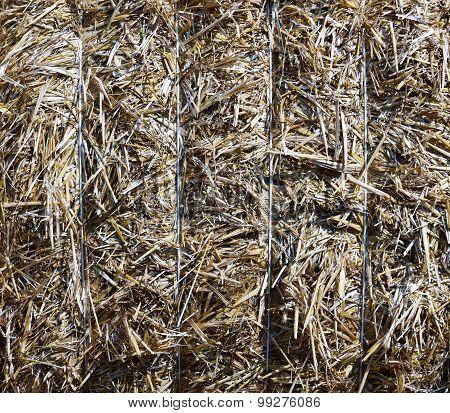Bale Of Straw (background)
