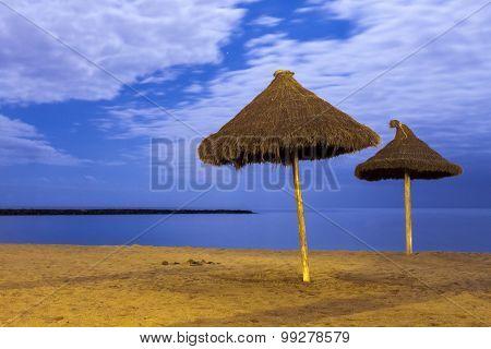palm parasols on empty moonlight beach