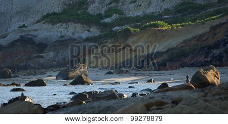 Early Morning On Aquinnah Public Beach