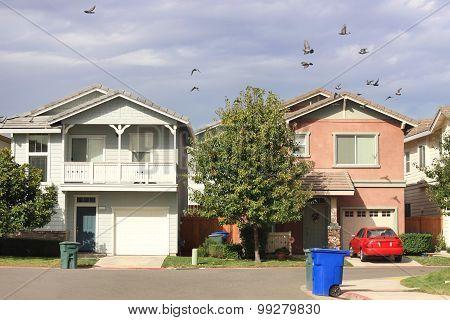 Standard Houses
