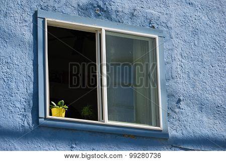 Yellow Flowerpot In A Blue Window