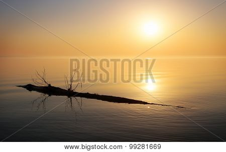 Beautiful ocean and snag. Sunrise in the sea