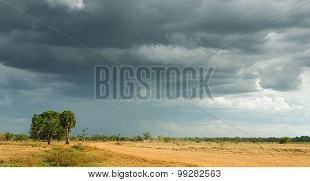 Storm Clouds Over A Tropical Landscape