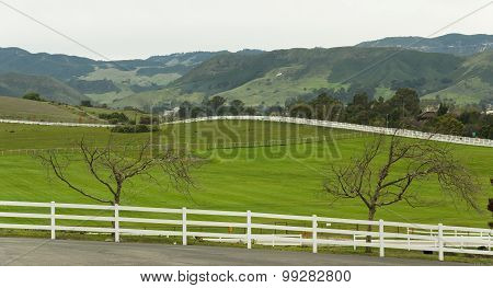Country Road With Picket Fence