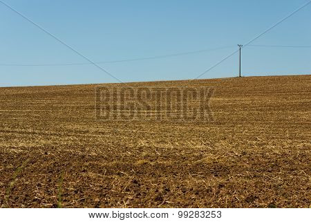 Powerlines On A Field
