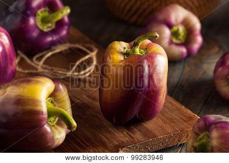 Organic Purple Bell Peppers