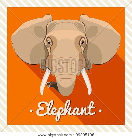 Vector portrait of a elephant. Symmetrical portraits of animals. Vector Illustration, greeting card