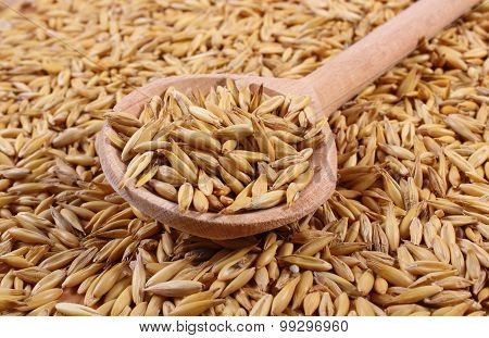 Organic Oat Grains With Wooden Spoon, Healthy Nutrition