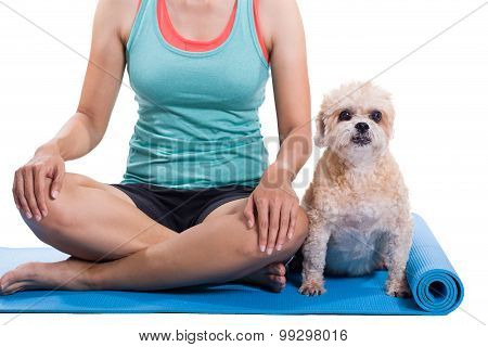 Woman And Dog Sitting On A Yoga Mat, Concentrating For Exercise And Listening To A Trainer