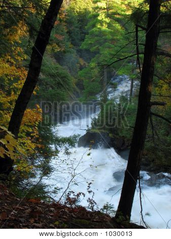 Magic Mountain Stream In The Autumn Wood