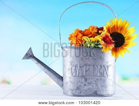 Beautiful flowers in watering can on bright background