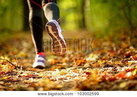 Woman exercise walking outdoors, shoes closeup