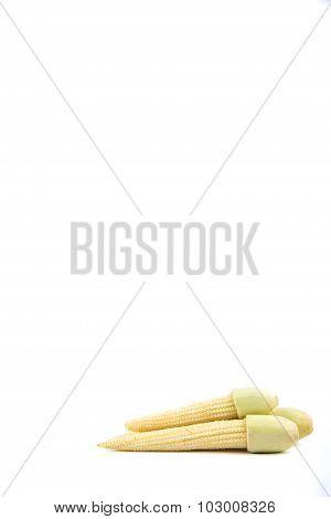 Isolated Of Yellow Baby Corn