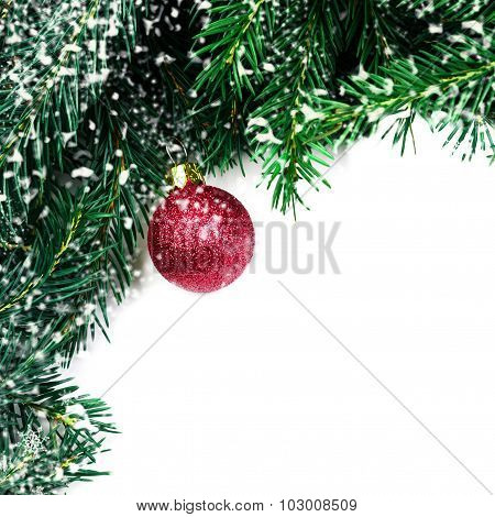 Christmas Tree Branches With Red Bauble And Snowflakes Isolated Over White Background With Copy Spac