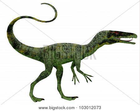 Juravenator Dinosaur Profile