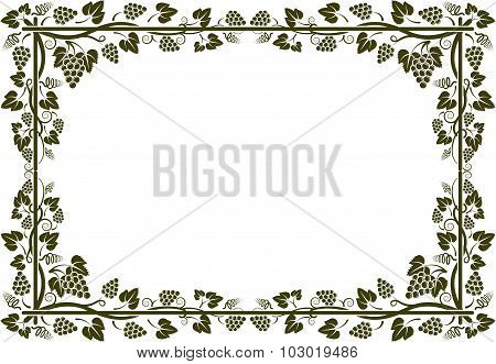 grapevine frame