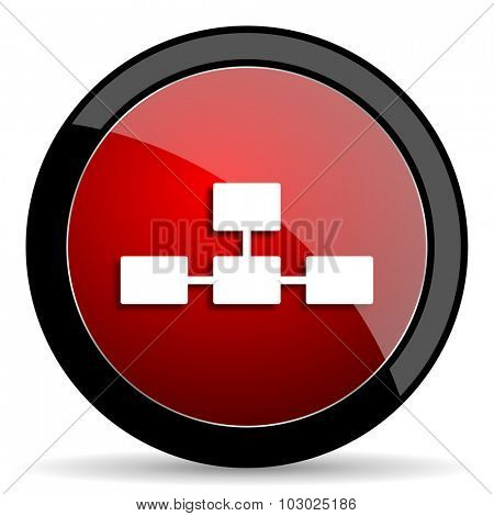database red circle glossy web icon on white background, round button for internet and mobile app