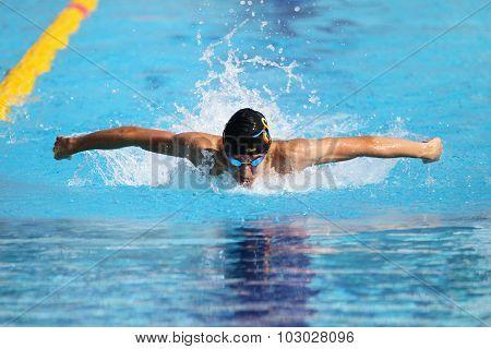 Turkish Swimming Championship