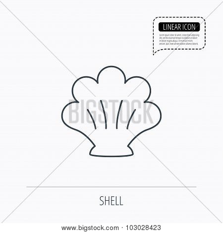 Sea shell icon. Seashell sign.