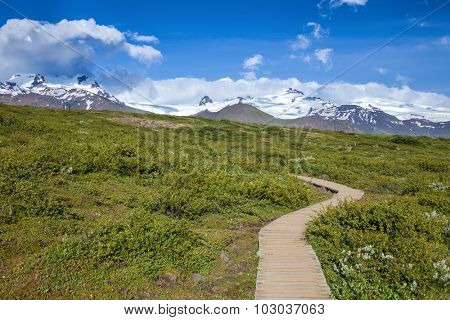 Wooden boardwalk at the Skaftafell National Park in Iceland
