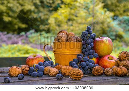 Autumn Still Life With Ecological Bio Fruit