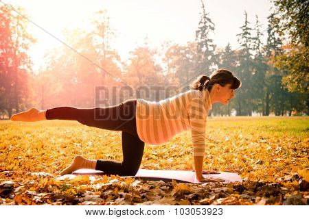 Healthy pregnancy - exercising outdoor