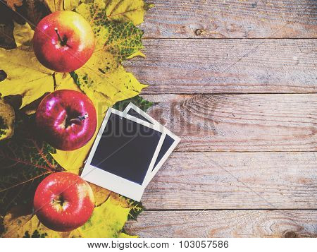 Autumn background with colorful leaves and apples on rustic wooden board. Creating fall season memories with retro photo cards of photo frames. Thanksgiving and Halloween holidays concept. Copyspace