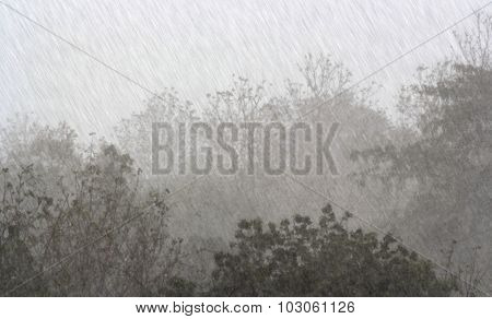 Rain On Nature. Abstract Background Rain