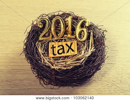 New born 2016 with tax paper on nest