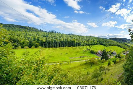 Panoramic view of the black forest in Baden-Baden. Germany. Europe.