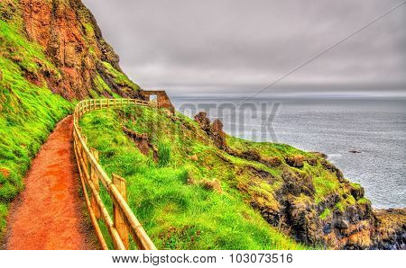 Path Along The Giant's Causeway In Northern Ireland