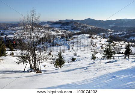 Winter Rural Scene
