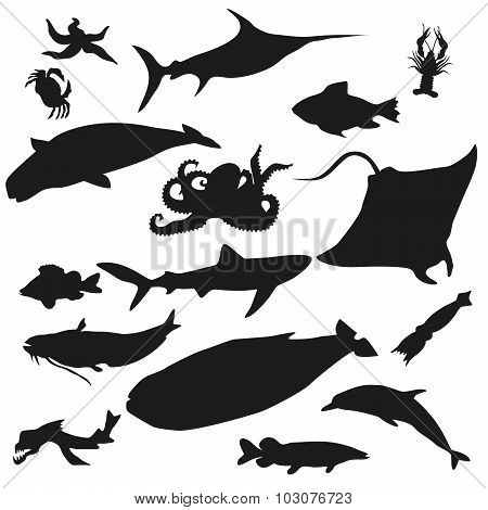 Set Of Fish Silhouette Icon. Stock Vector