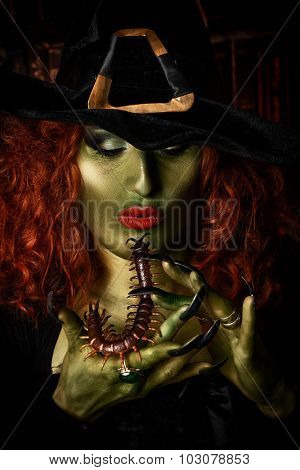 Close-up portrait of a fairy wicked witch in the wizarding lair. Magic. Halloween.