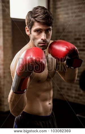 Portrait of serious man wearing boxing gloves at the gym