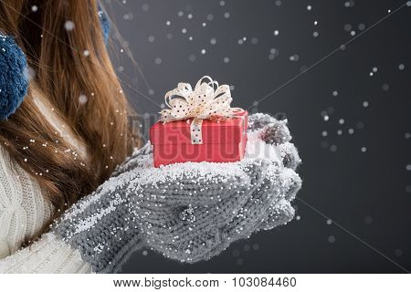 Winter Surprise