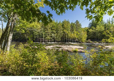 Kettle River In The Woods