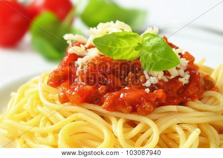 detail of spaghetti with tomato sauce and grated cheese
