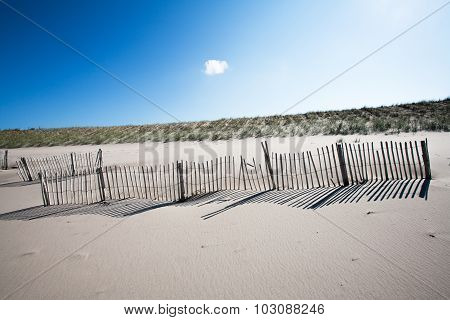 Wooden Fences On The Beach