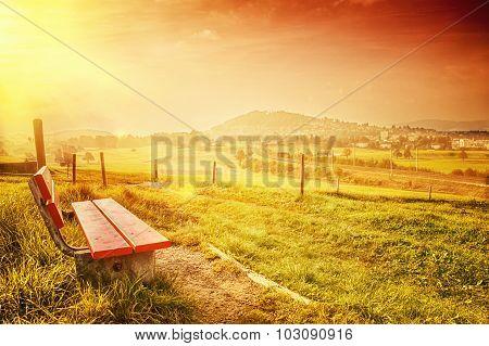Landscape Of A Bench In Autumn Season