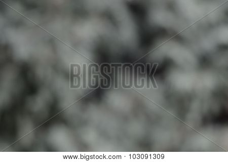 Background, Gray And White Abstraction