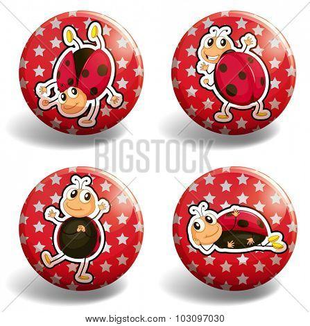 Ladybug on red badges illustration
