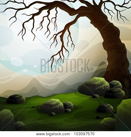 Nature scene with dead tree and fog illustration