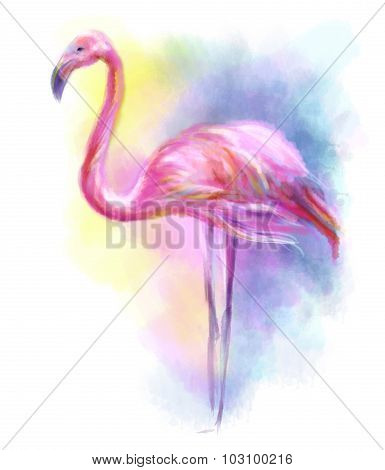 Abstract flamingo pink illustration